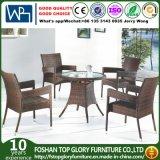 Outdoor Rattan Dining Set Patio Chair Garden Table Garden Furniture (TG-1061)
