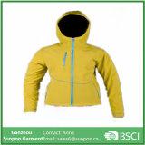 Winter Windproof Garment Wholesale Jacket for Women