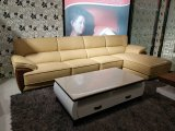 Modern Style Living Room Genuine Leather Sofa (SBL-1707)