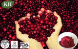 Good Quality for Cranberry Extract, Anthocyanins, Anthocyanidins