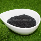 Seaweed Kelp Seaweed Extract Bio Fertilizer Wholesale