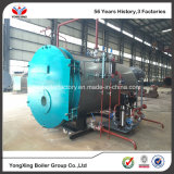 China Supplier Fully Automatic Gas Fired Boiler and Waste Oil Types Gas Heaters