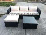 PE Rattan Furniture 6 PCS Sofa Set with Cushion