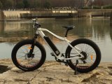 China Popular Mountain Electric Bike /Electric Dirt Bicycle 350W500W for Europe Market