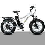 """20"""" Rear Drive Motor Samsung Lithium Battery Fat Tyre Electric Bike for Children"""