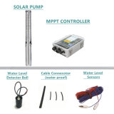 Reliable DC&AC Compatible Solar Pump for 3 Years Warranty