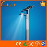 Monocrystalline Panel 40W 5m High LED Solar Garden Lamp