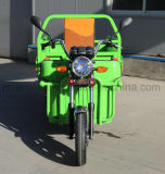 New 1000W Electric Cargo Tricycle