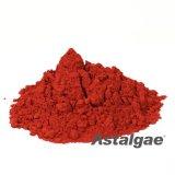 High Quality Haematococcus Pluvialis Powder / Astaxanthin Powder 4%
