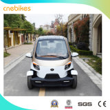 Lzd Fashion Adult Cheap Mini High Quality China Manufacturer Electric Cars Vehicle