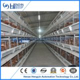 Poultry Farm Equipment Best Price Automatic Layer Chicken Cage for Sale