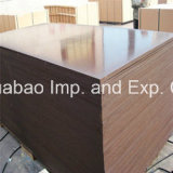 Poplar/Hardwood Recycle Film Faced Plywood Waterproof Glue Finger Joint Core