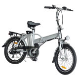 Easy Rider Electric Bike 20 Inch Folding Bicycle En15194 Jb-Tdn01z