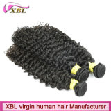 Discount Price Natural Color Top Brazilian Premium Hair Extensions