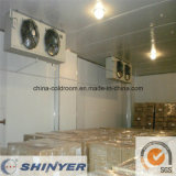 Customized Cold Storage Room for Cherry