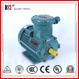 AC Exp-Proof Electrical Motor with Wholesale Price