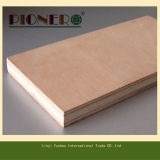Cheap Commercial Plywood for Algerie Market