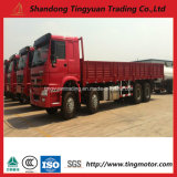371HP Cargo Truck with High Quality and Best Price