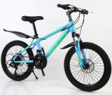 New Steel MTB Mountain Bicycle Adult Bike with 21 Speed