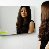 21.5 Inch Magic Mirror Vanishing TV Bathroom Luxury Design Mirror TV