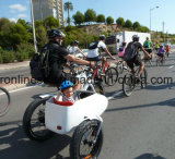 250W/500W/750W Sidecar Fat Pedelec/ Side E Bike/Side Electric Bicycle/ Fat Vintage Side E Bicycle/Eletric Side Trike/E-Side Bike/Baby Carry Side Car Ce