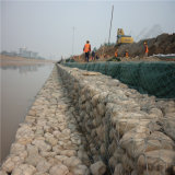 Wholesale Galvanized Gabion Box Price/3mm Gabion Wire Mesh for Retaining