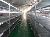 Racking System, Middle Racking Shelf (5042)