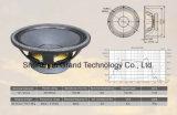 "12"" Professional PA Karaoke Speaker Audio Equipment (AS-209P)"