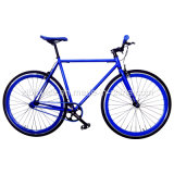 Hi-Tensile Steel Fixed Gear Bicycle