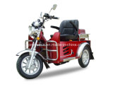 Handicapped Tricycle Disabled Scooter 110cc (DTR-2)