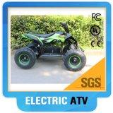 2017 350W, 500W, 800W, 1000W Mini Electric ATV Quads for Kids