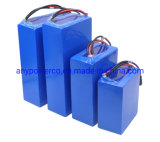 Customize 12V OEM Portable 18650 Li-ion/Lithium/ LiFePO4 Battery Pack for E-Vehicle Outdoor Battery