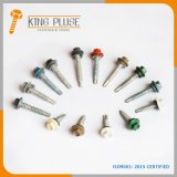 Roofing Screw/ Painted/Color Head/ Hex Washer Head Self-Drilling Screw #2 Point