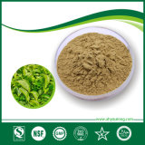 Green Tea Extract, Polyphenol 20-98%, EGCG 15%-98%, Plant Extract