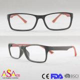 Fashion Designer Optical Frame Double Injection Reading Eyewear/Eyeglass/Glasses (14176)