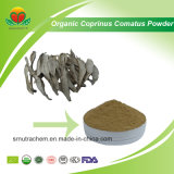 Manufacture Supply Organic Coprinus Comatus Powder