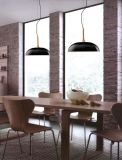 Good Quality Morden Wood Metal Pendant Lights (MD21162-1-500)