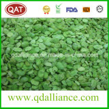 IQF Frozen Vegetables Peeled Fava Bean with Kosher Certificate