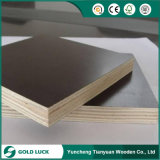 China Wholesale Phenolic Board 18mm Film Faced Plywood Best Selling Products to Philippines