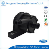 BLDC 12V 24V Mini Gas Water Heater Pump with Dry-Running Protection