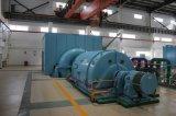 1MW/1000kw Biomass Back Pressure Steam Turbine Generator Set/Generating Sets
