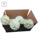 Handmade 6PCS/Box White Big Carnation Dried Flowers for Reed Diffuser