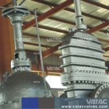 API 150#/300#/600#/900#/1500#/2500# Steel Parallel Double Disc Gate Valve