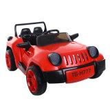 Double Motors Kids Electric RC Car Wholesale