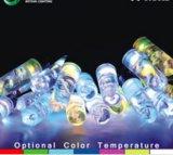 Wholesale High Quality Christmas Lighting Deco Outdoor LED Strip Light