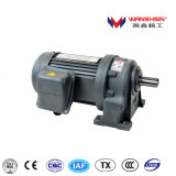 Wanshsin Seikou Horizontal Installation Medium Gear Motor