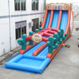 2018 New Gaint Long Inflatable Water Slide, Theme Water Slide Inflatable Water Game