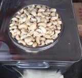 Vietnam Cashew Nut with Wholesale Price