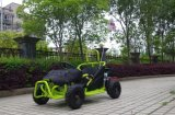 Newest Go Kart 80cc for Kids