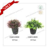 H10-18cm Wholesale Artificial Indoor Grass Plant Type Pot Flower